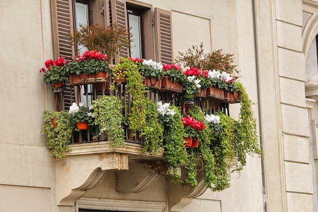 květiny na balkoně