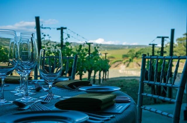 údolí vinohradů