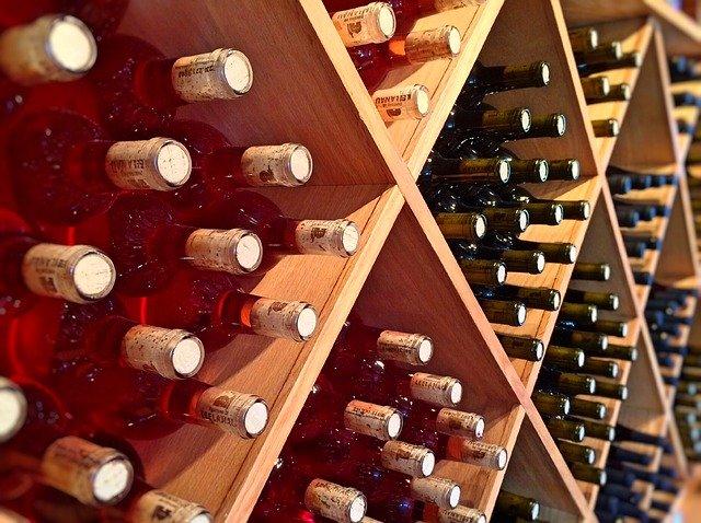 regály ve vinici