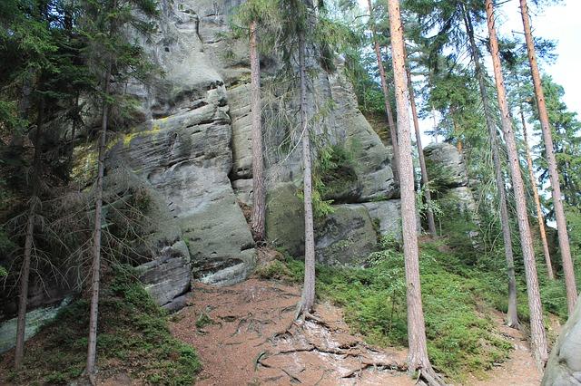 pohled na Adršpašské a Teplické skály